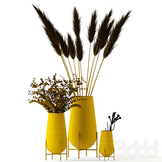 Plants in Echasse Vases