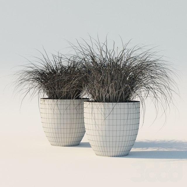 Potted Grass Set