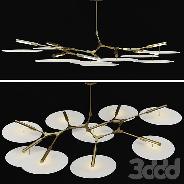 Branching Discs