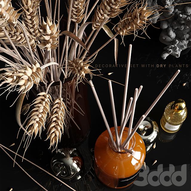 Decorative set with dry plants