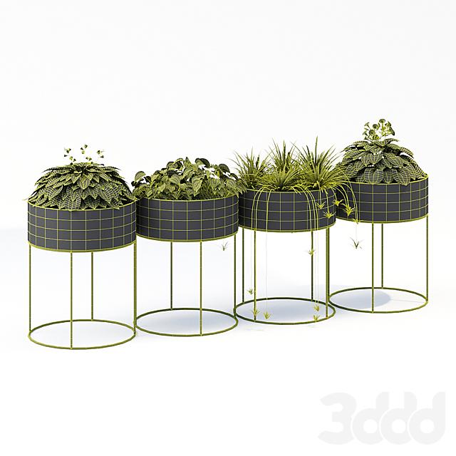Plant box round