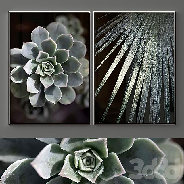 "Poster Set ""Green Succulent"""