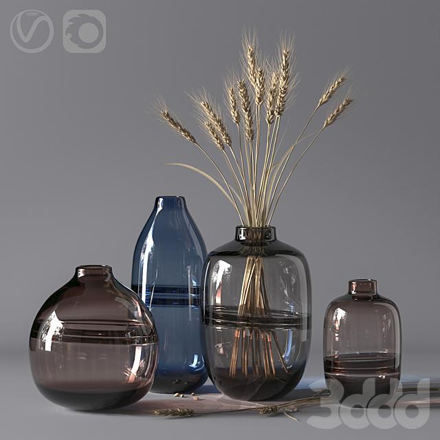 Minimalist Clear Glass Vase