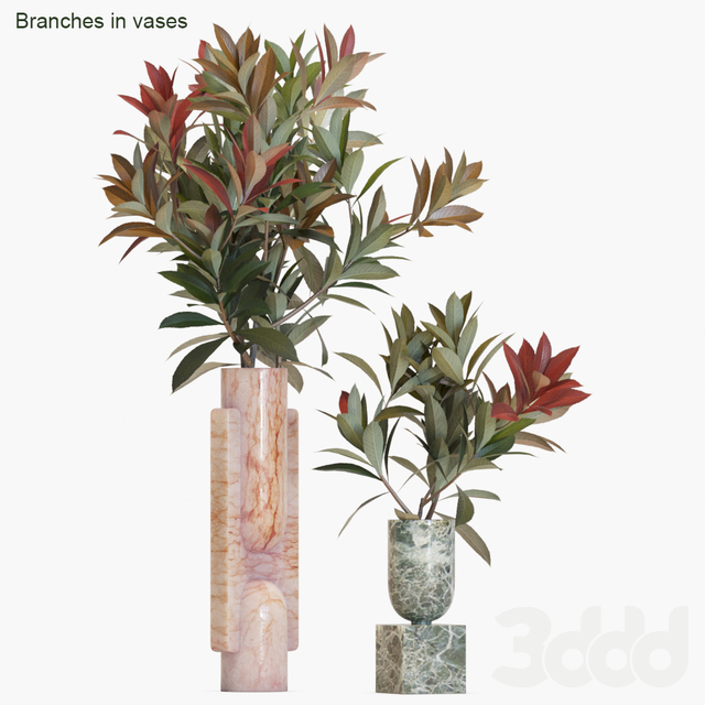 Branches in vases #17