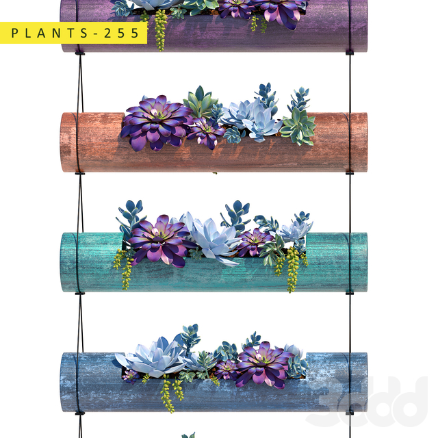 Plants 255