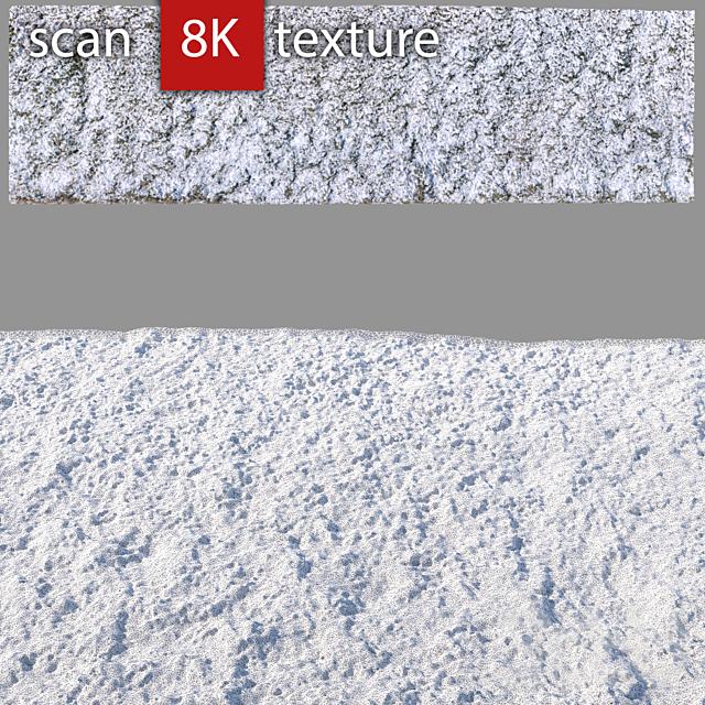 Трава в снегу 35