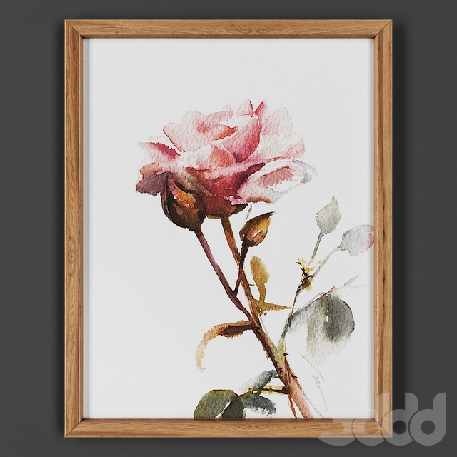 Picture frame 00025-29