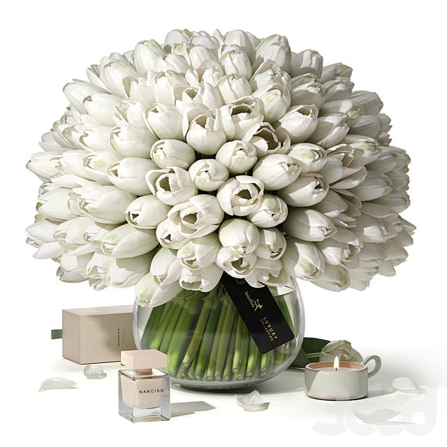 Tulips Interflora Luxury Collection