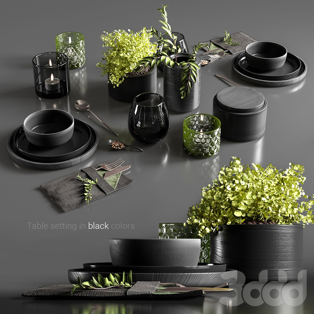 Table setting in black colors