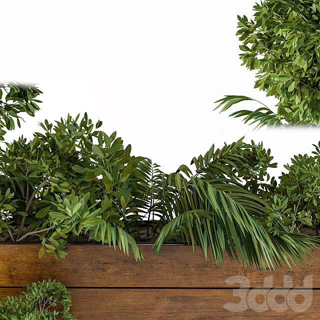 Outdoor Plants-Flower Box 2
