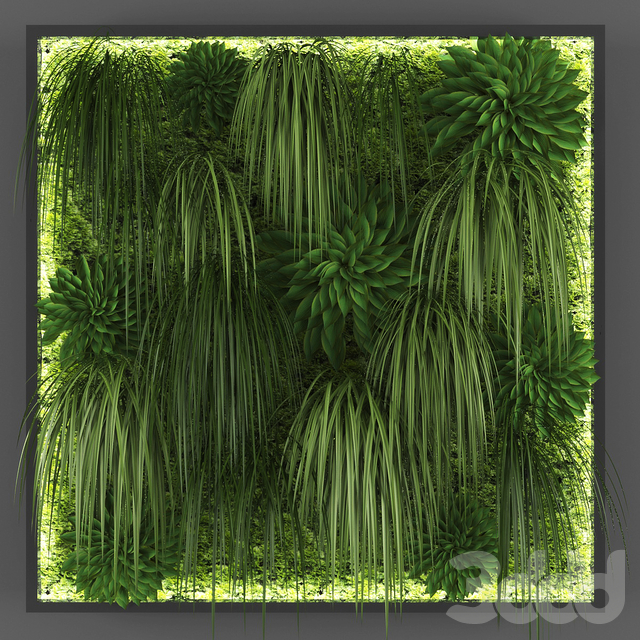 Vertical garden 036