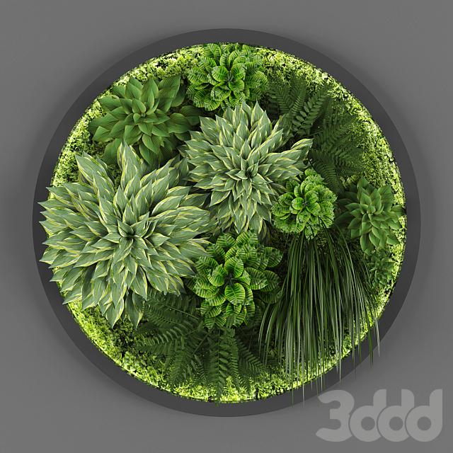 Vertical garden 037