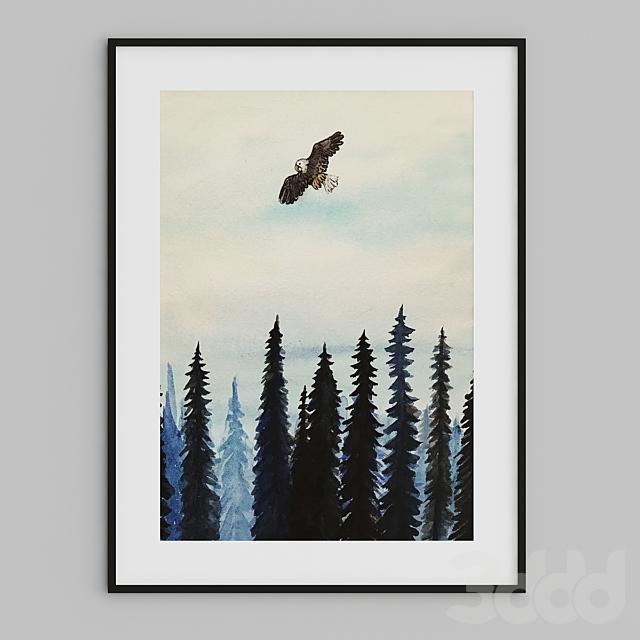 land of eagle