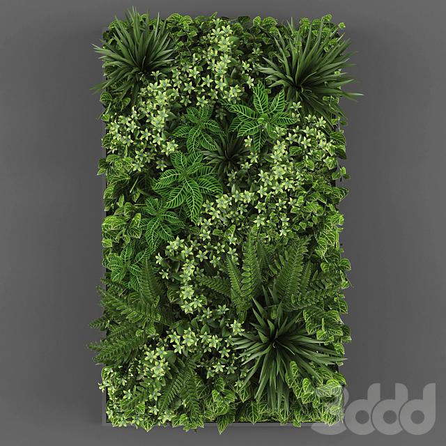Vertical garden 050