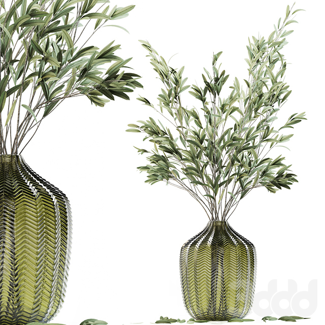Olive stems in green glass vase