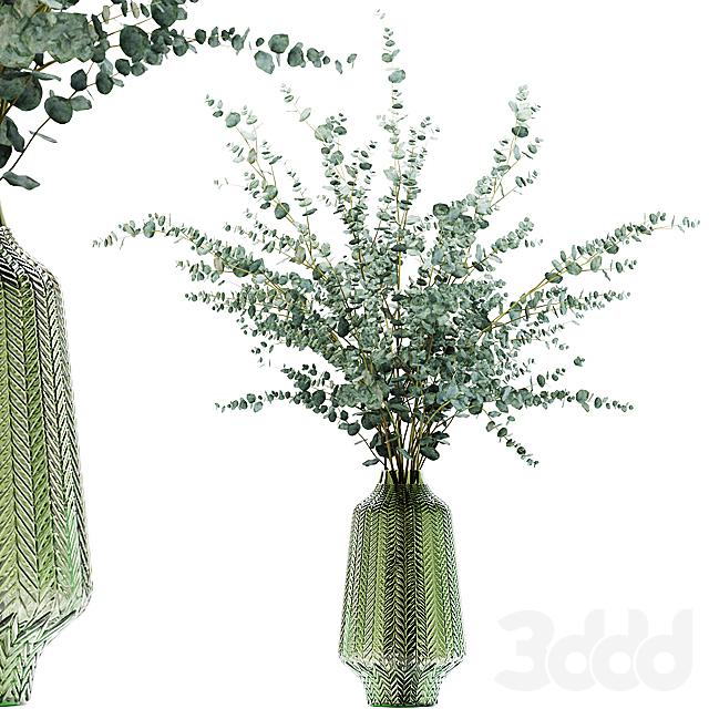 Eucalyptus branches in a green vase