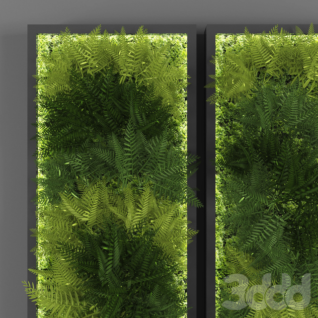 Vertical garden 057