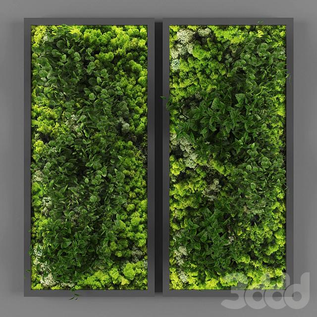 Vertical garden 062