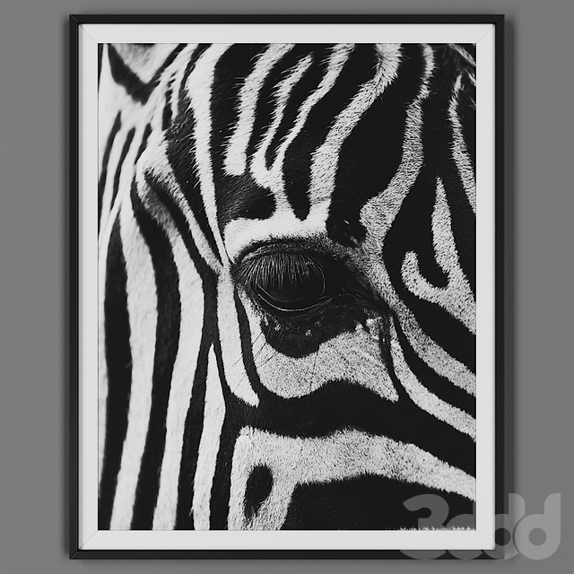 Picture frame 00032-18