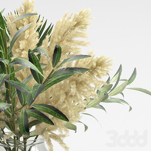 Букет из пампасов, оливок, и пальмовых листьев