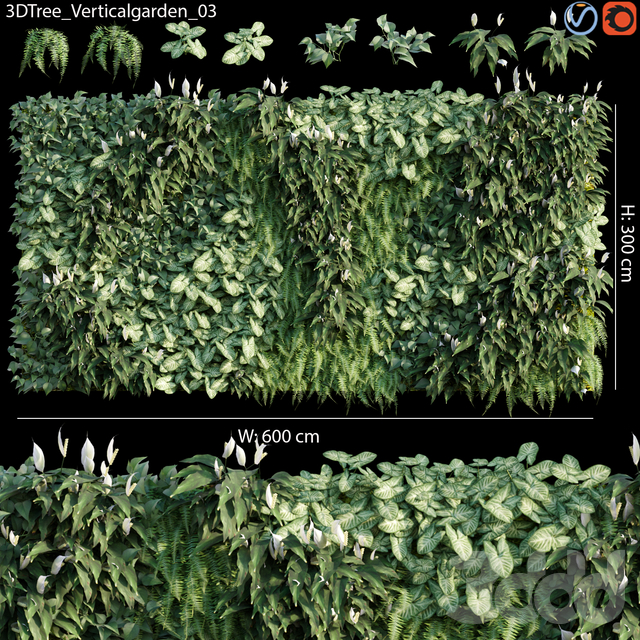 Verticalgarden - Green wall 03