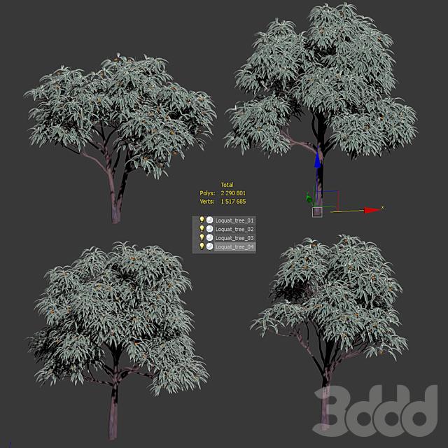 Набор лиственных деревьев с плодами - Мушмула. 4 модели