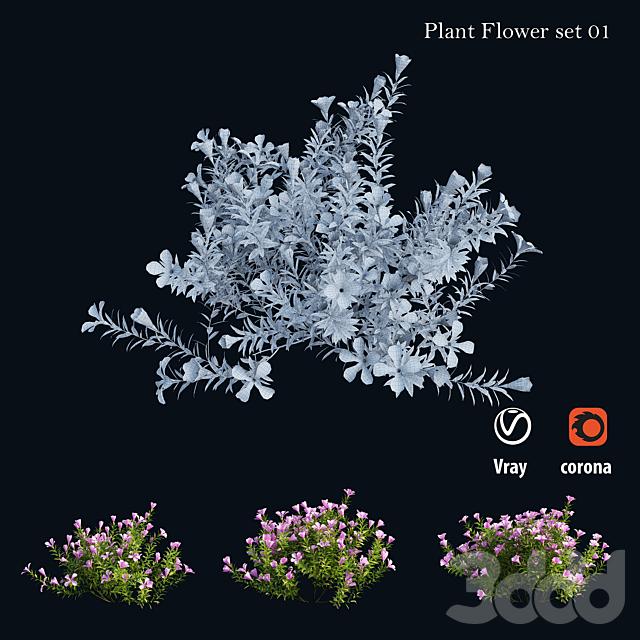 Plant Flower set 01