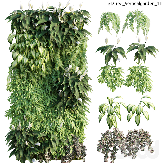 Verticalgarden - Green wall 11