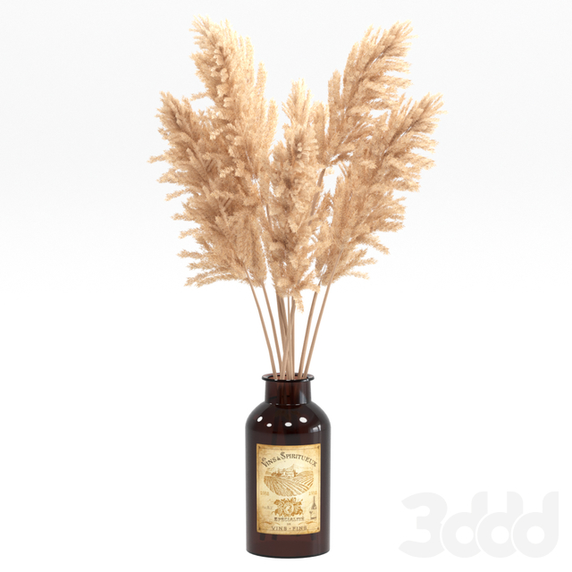 Букет из пампасной травы