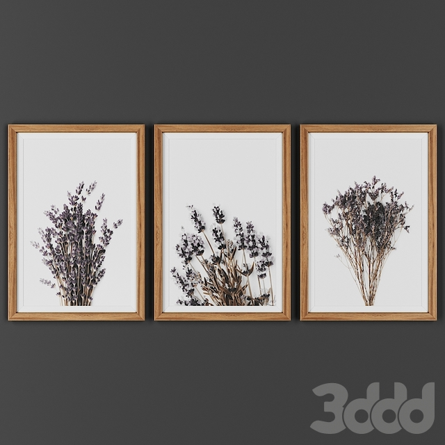 Picture frame 00022-23