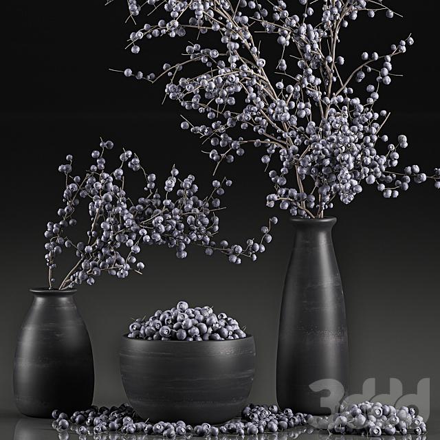 Коллекция растений 549.