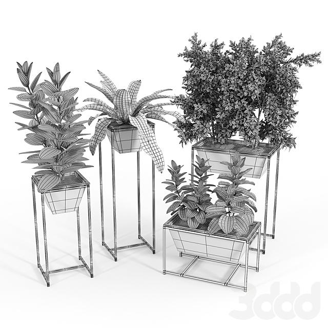 Stand Planter 2