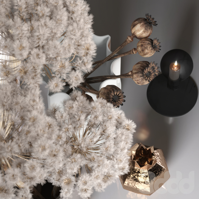Decor_set_03 with Fluffy Dried Flower