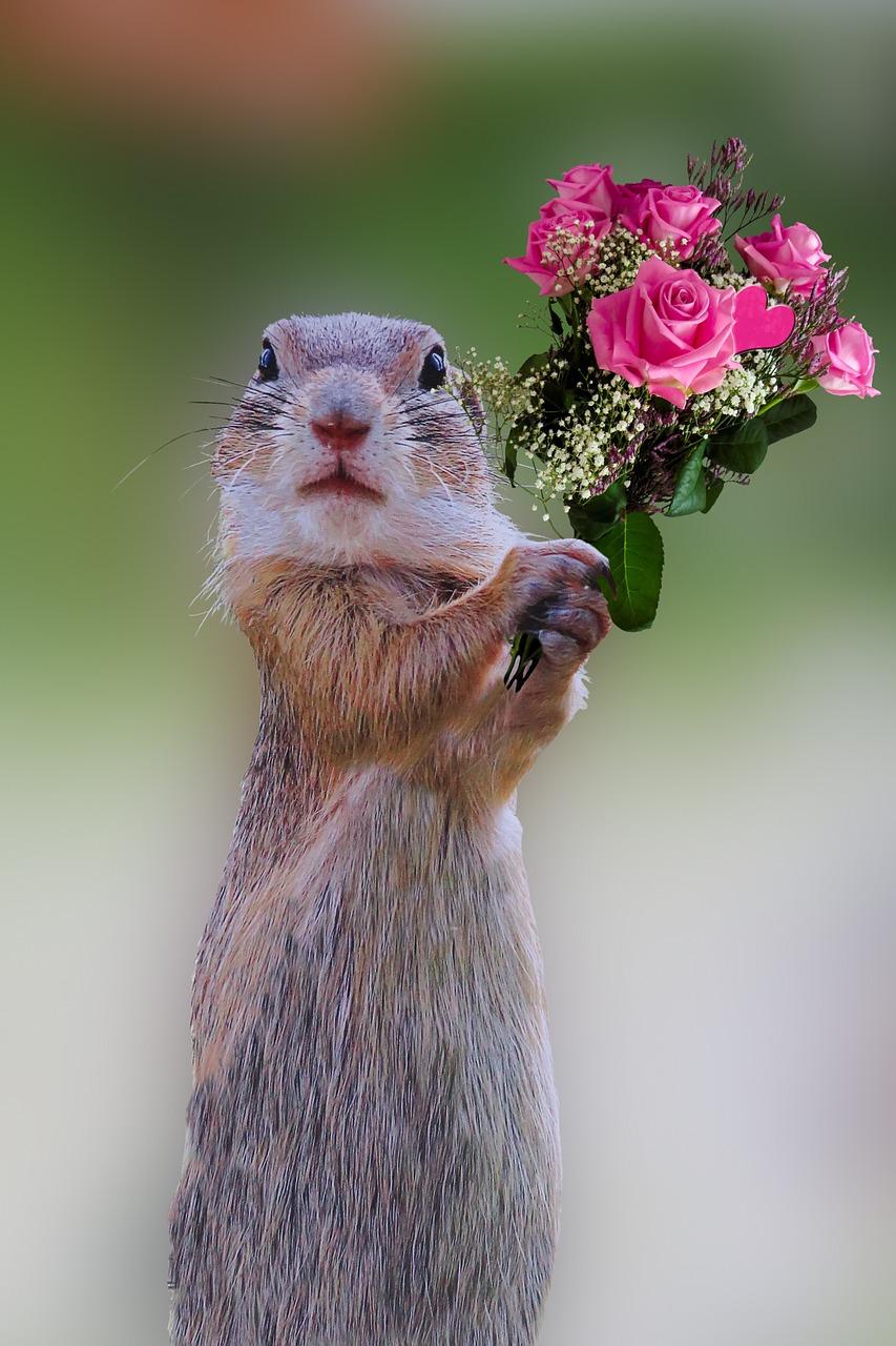 ягода- прикольные картинки дарю цветы нее какой-то